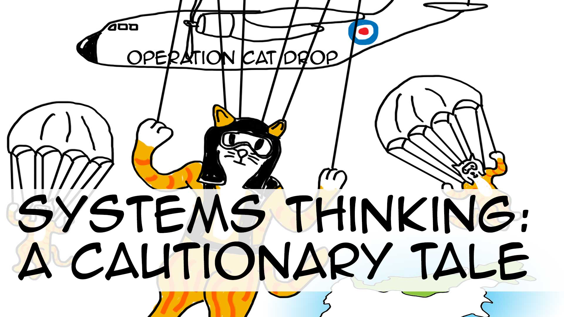 Systems thinking: A cautionary tale