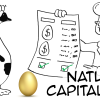 Natural-Capitalism-Thumb