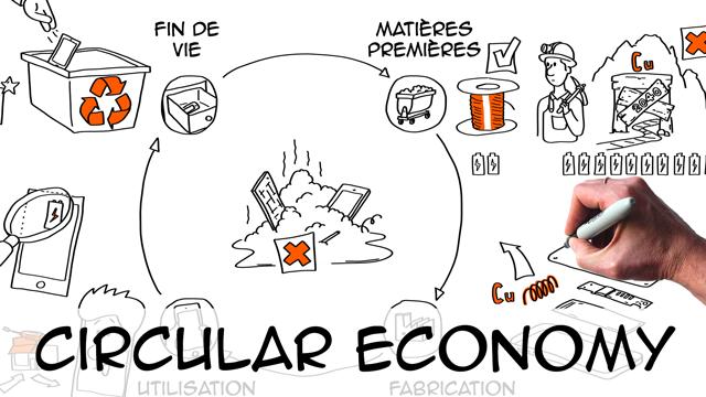 Circular Economy: definition & examples