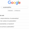 Sustainability-Definition-Google-Search