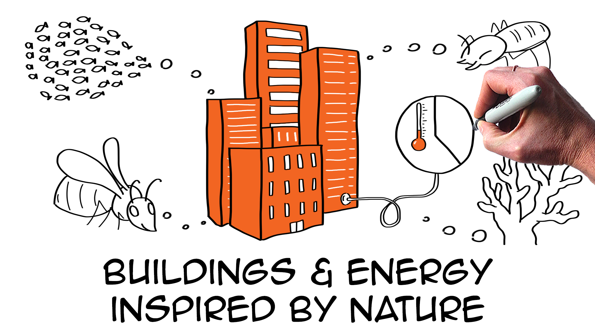 5 amazing biomimicry examples providing real sustainability solutions