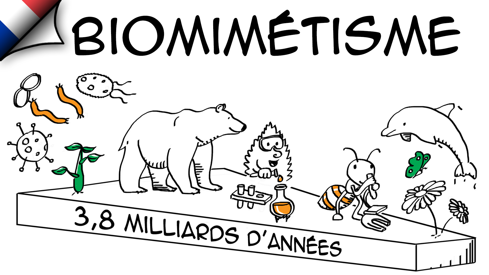 Biomimétisme : innovation inspirée de la nature